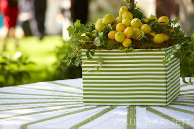 Design - Everafter Events Photography - Paul Barnett