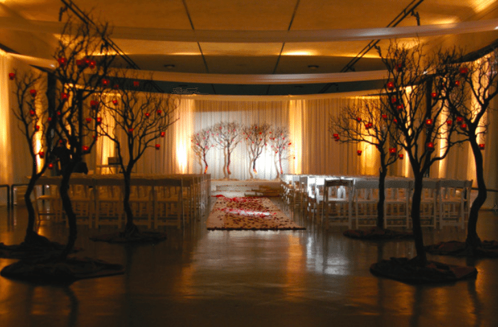 Stark black trees filled with the soft glow of orange lights give a modern feel<br>Image provided by The Finishing Touch Event Design