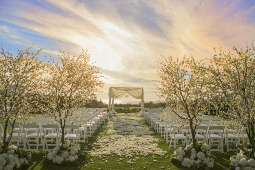 Fabulous blossoming trees set the stage for a glorious wedding Image provided by A Good Affair Event Design