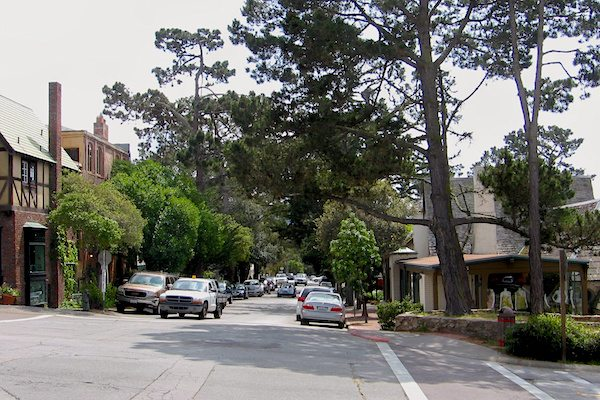 Large conifers give Carmel a forest feel.