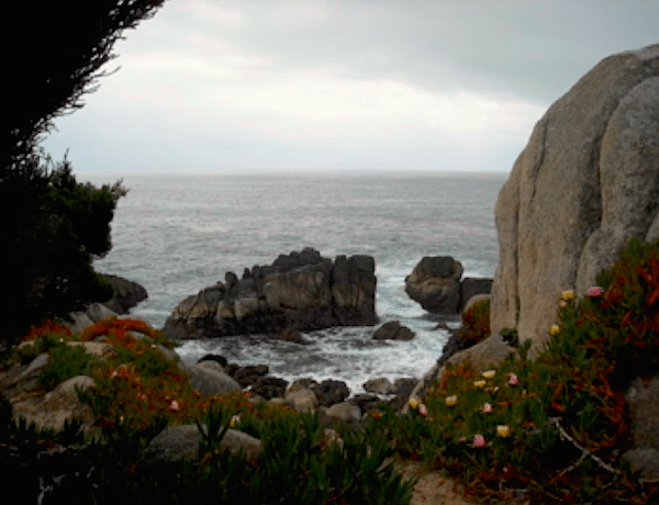 Explore the many secluded coves and and ocean vistas along this dramatic coastline.