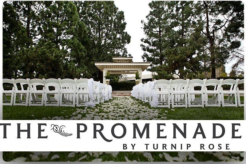 The Promenade by Turnip Rose