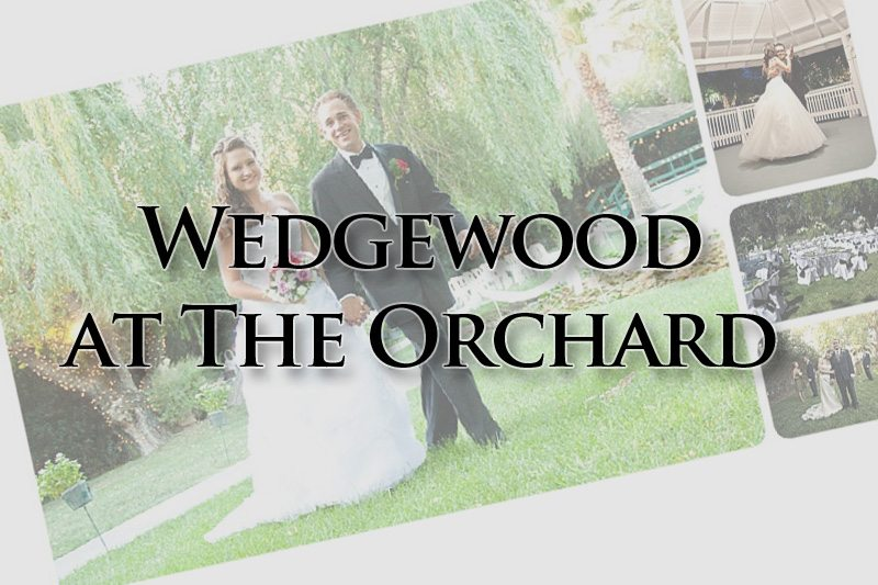 Wedgewood at The Orchard