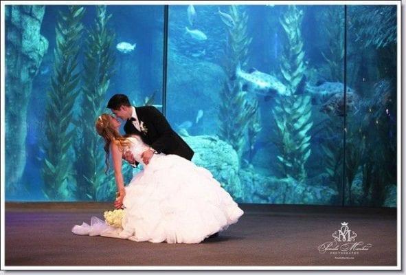 Aquarium of the Pacific - WeddingCompass.com - pdspecialevents.com