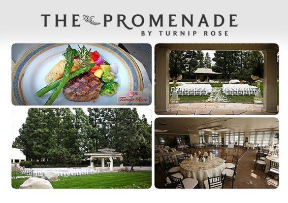 Turnip Rose Promenade and Gardens
