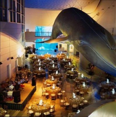 Aquarium of the Pacific - WeddingCompass.com