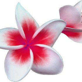 invitationsbytango_isla_280x280-20026366_3b685hqv