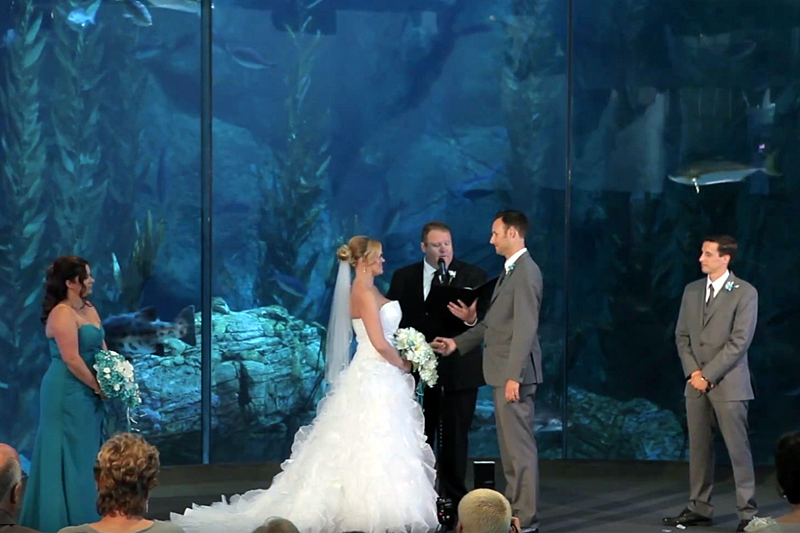 stephanie and troy - Real Wedding - Prince weddings - weddingcompass.com
